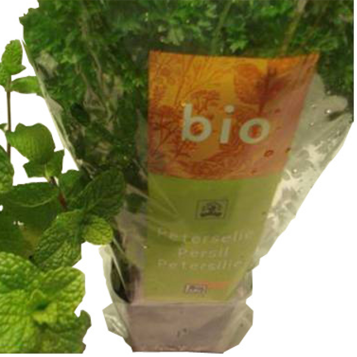 Biodegradable foils and packaging